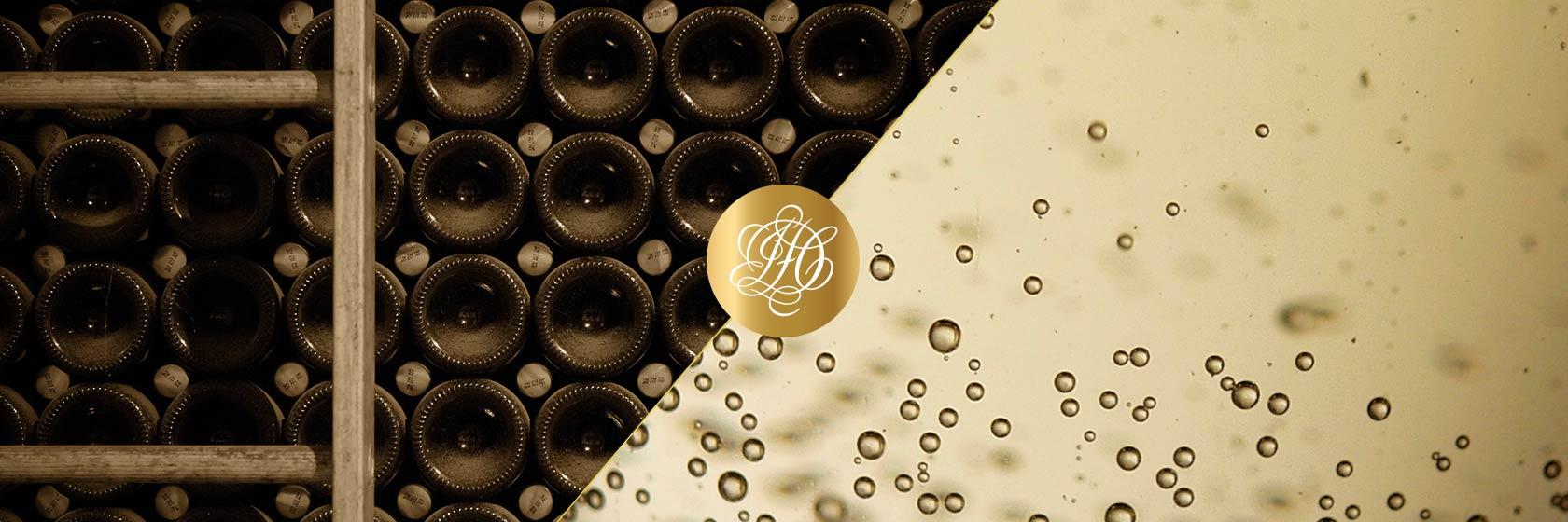femme chalons en champagne